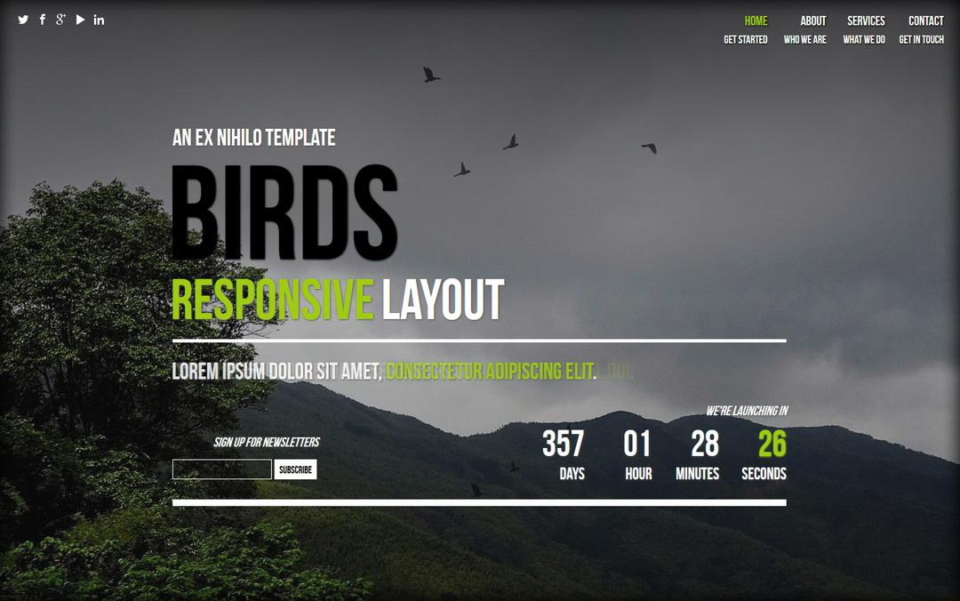 birds one page website