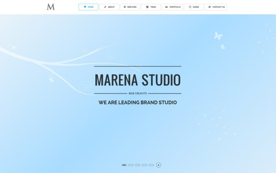 MARENA One Page Vertical / Horizontal Template