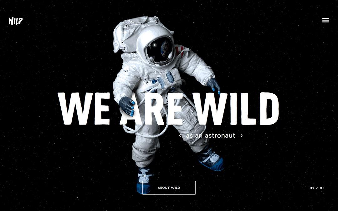 wild one page website