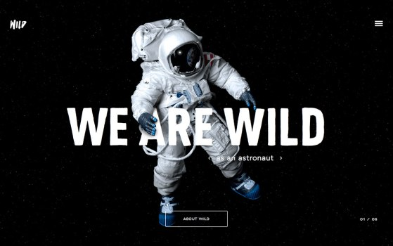 wild one page website