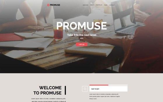 PromuseScreen1
