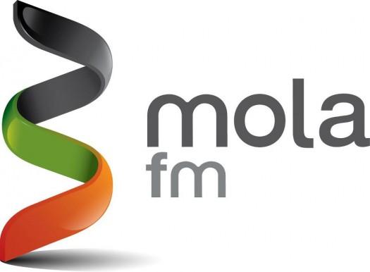 Mola.fm, una plataforma crowfunding para mA?sicos