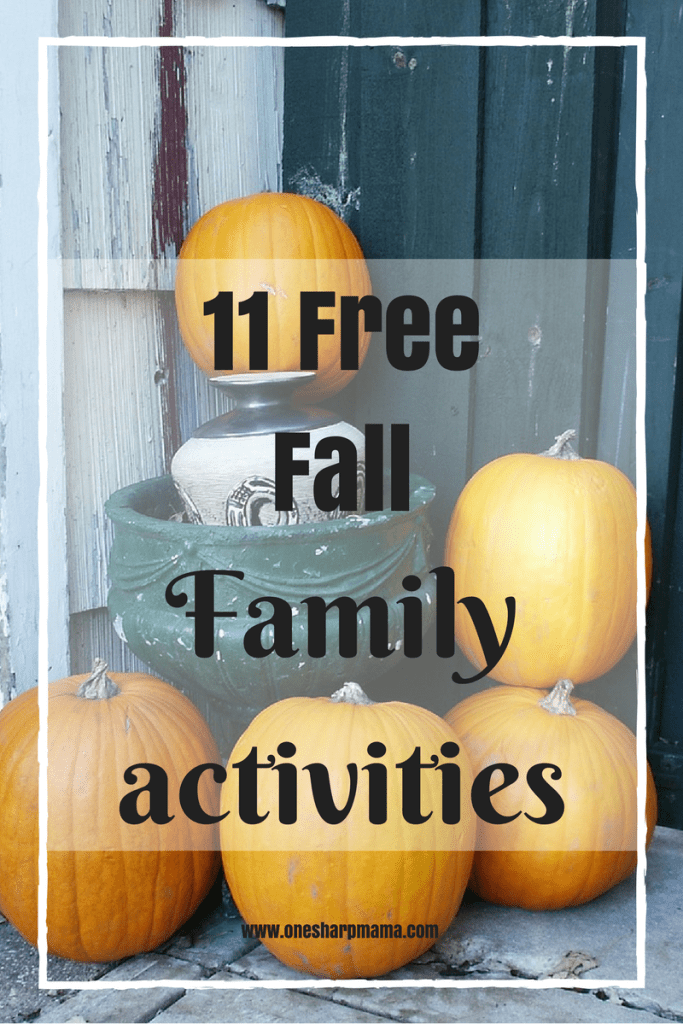Here's a list of must do fun and free fall family friendly activities.