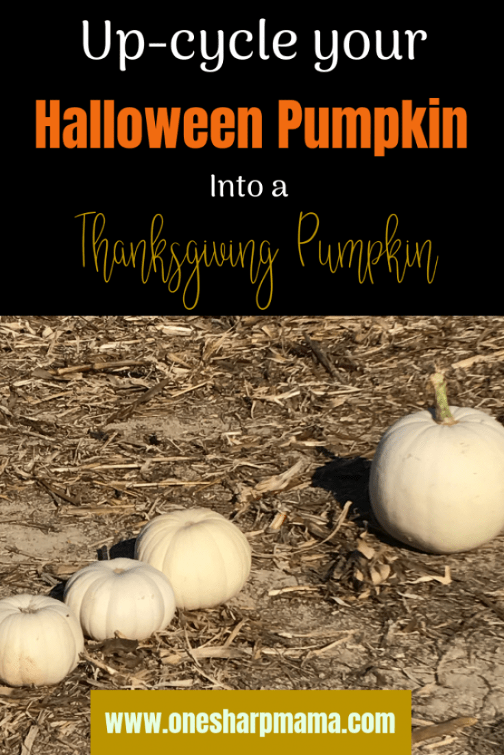 What do you do with your old Halloween Pumpkins? Use this adorable family craft to create a family Thanksgiving pumpkin! This fun and thankful pumpkin craft for the family is easy and has a great meaning. DIY pumpkin craft idea here for you! Finished with your Halloween Pumpkins, now what? Check out this cute diy craft with pumpkins. #familycraft #thankful #thankfulfamily #thanksgivingcraft #pumpkindiy #diypumpkin #diythanksgiving #familyfun