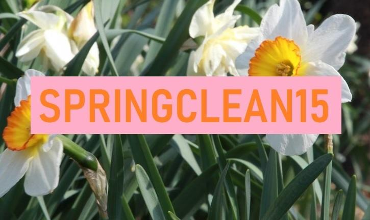 springclean15 coupon code oneshi press store