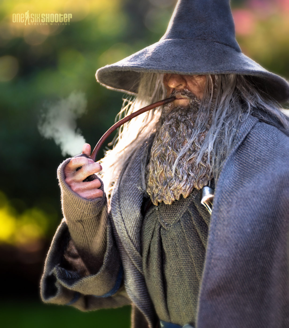 Gandalf the Grey in the Shire