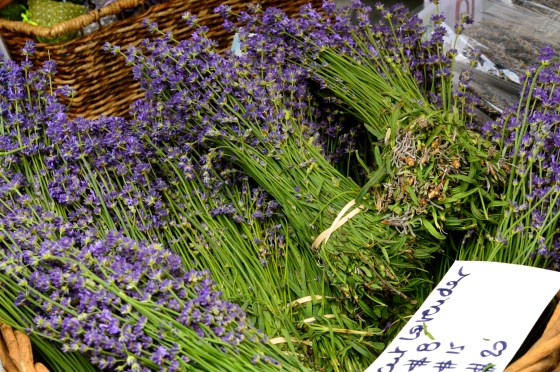 lavender at nyc farmers market