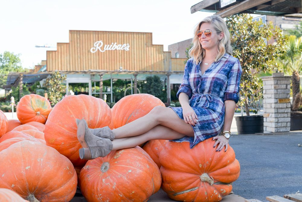 sitting on giant pumpkin in blue plaid shirtdress