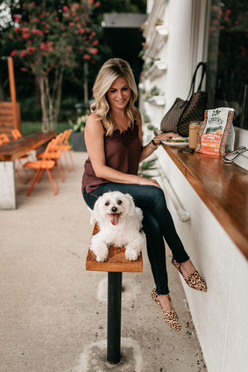 fashion blogger, brooke burnett, fall outfit