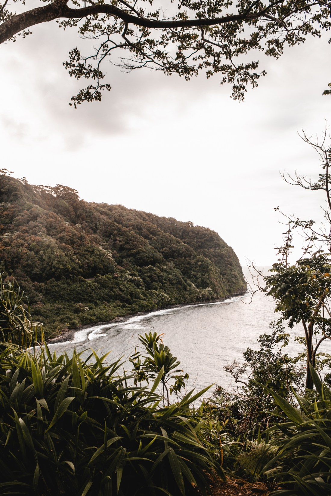 Road To Hana by One Small Blonde