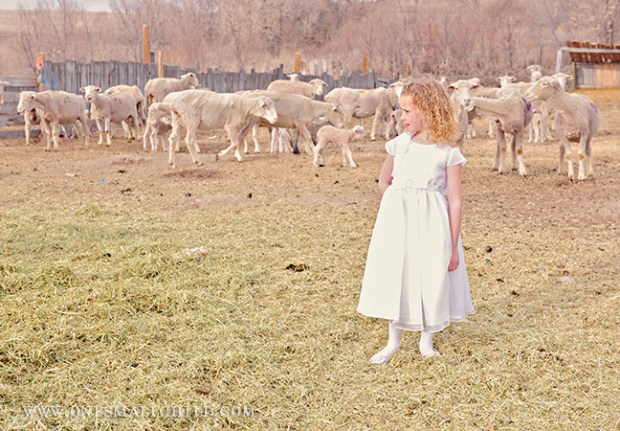 Miss Emery Girl Dresses | One Small Child