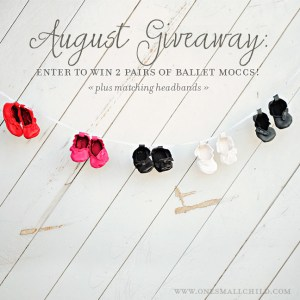 Baby Moccasin Giveaway   One Small Child