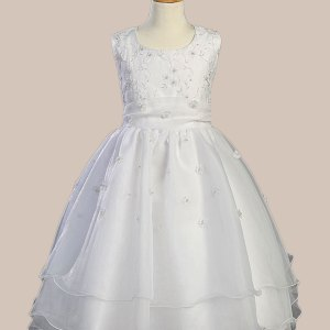 Embroidered Organza Dress with Pearled Bodice and Organza Skirt