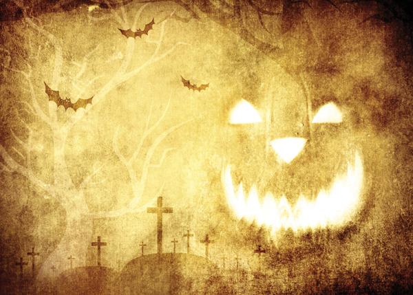 Fall Fairy Wallpaper Halloween Backdrop