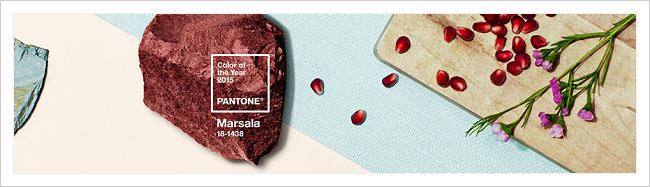 Pantone_Color_of_the_Year_shop_banner_opt