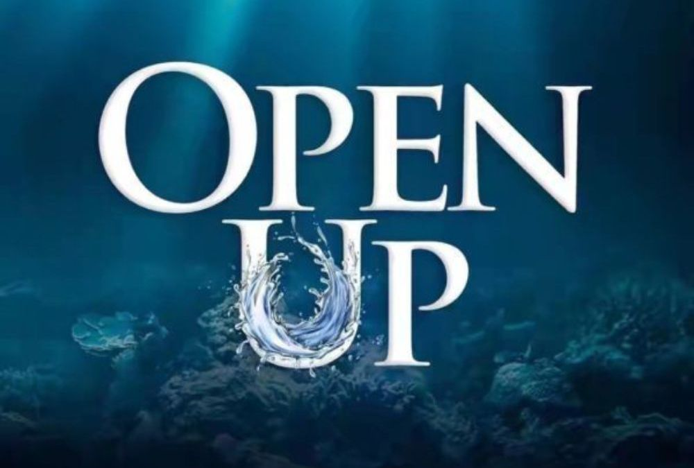 Open Up – Dunsin Oyekan