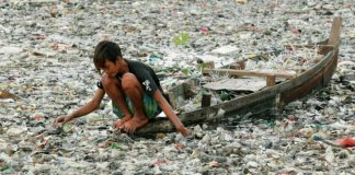 Bacteria Can Help Eradicate Plastic from This Beautiful World