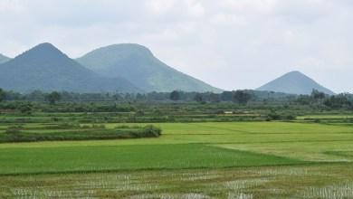 Interesting facts about odisha