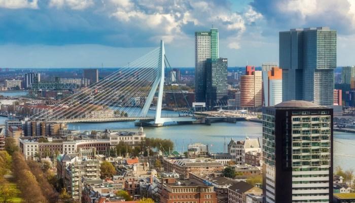Bedwantsenbestrijding in Rotterdam