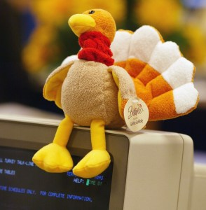Turkey on a computer monitor