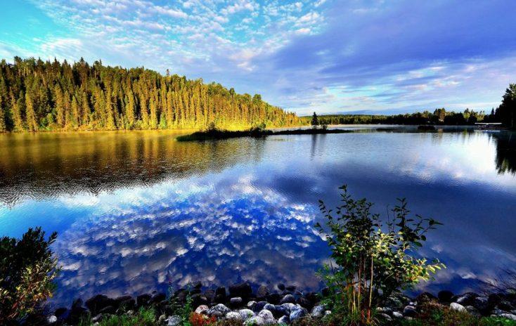 parques naturales auckland