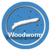 woodbut
