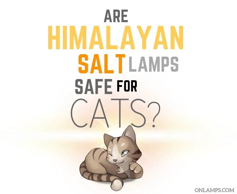Are Himalayan Salt Lamps Safe for Cats