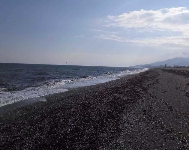 """Εντυπωσιακές εικόνες: """"Μαύρισε"""" θάλασσα και παραλία στον Αγιόκαμπο από τη θαλασσοταραχή"""