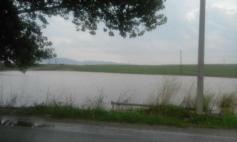 Απίστευτες εικόνες: Σε κανονικές... λίμνες μετατράπηκαν χωράφια στη Χάλκη!