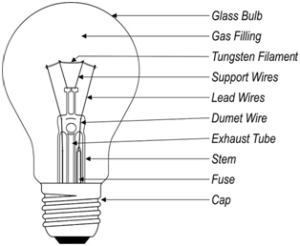 Uses of light bulbs and their structure | Science online