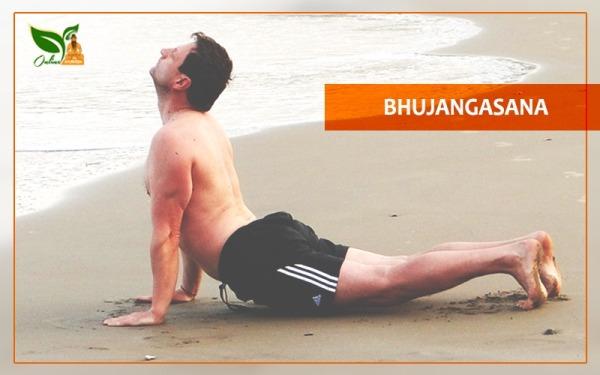 Bhujangasana Image