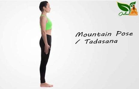 Mountain Pose or Tadasana image