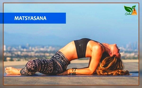 matsyasana fish pose images
