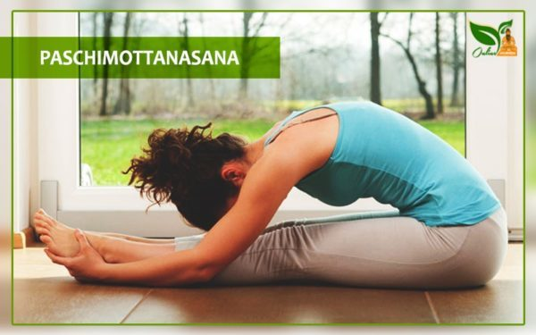 Paschimottanasana Benefits and Steps