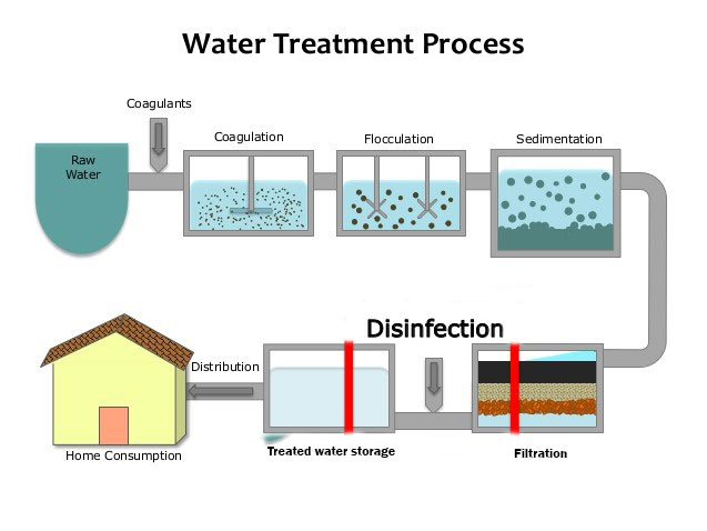 Steps of water purification process - Online Biology Notes