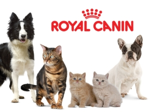 Royal Canin in Romania