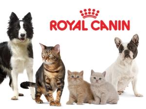 Royal Canin in Romania