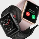 Easy Way To Successfully Reset An Apple Watch Fast