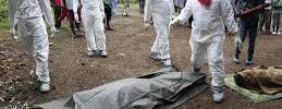 Ebola outbreak in West Africa image