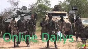 Boko Haram: 10 Chinese workers & 27 hostages freed in Cameroon