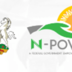 Portal for N-Power Successful Candidates List Checker | npower.gov.ng