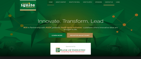 Youth Ignite Initiative Project