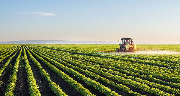 Ogun State Agricultural Land Application Form, Requirements And Guidelines