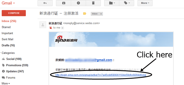 Sina email verification