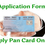How To Apply For PAN Card Online For Individuals