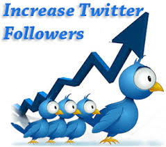Twitter Followers | ONLINE DAILYS