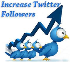 Increase Twitter Followers Organically