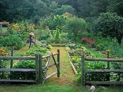 Starting A Gardening Business image