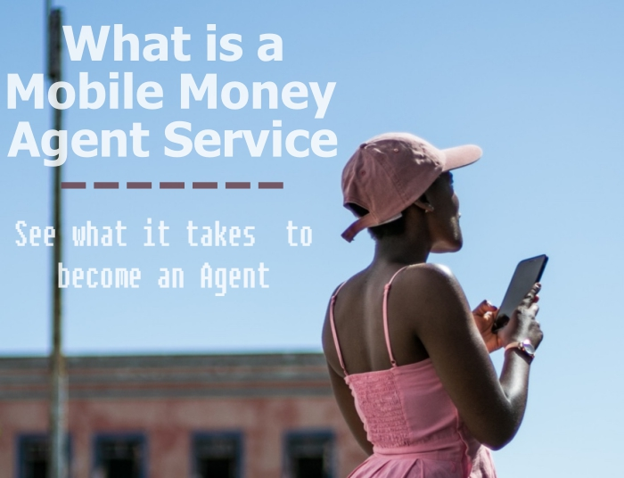 What is Mobile Money Agent Service?