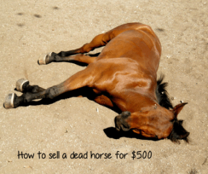 How to Sell a Dead Horse for $500